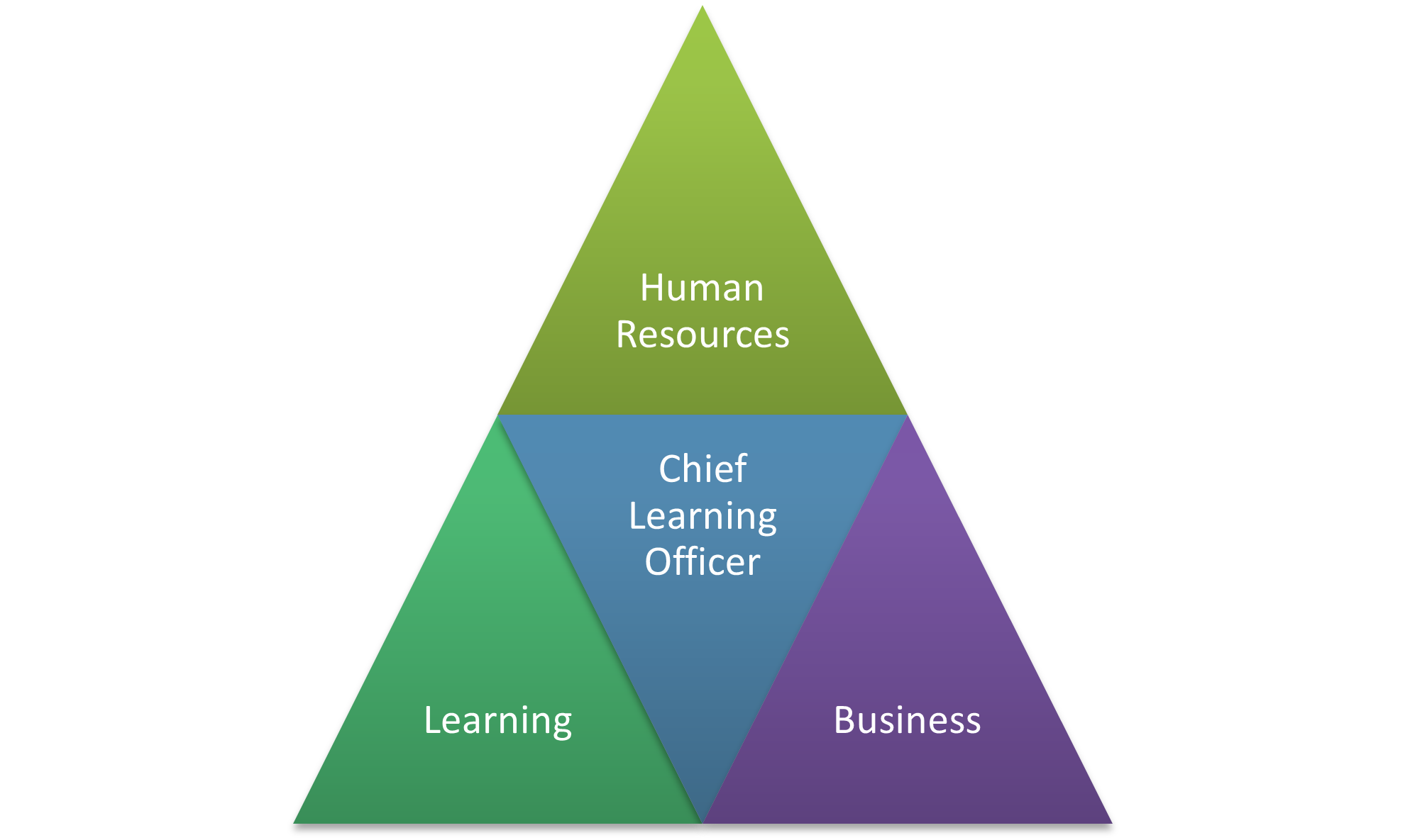 Chief Learning Officer as the Bridge